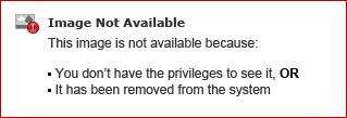 How to Avoid the Spam Folder