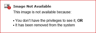 Instructions: Creating an Advanced RFP